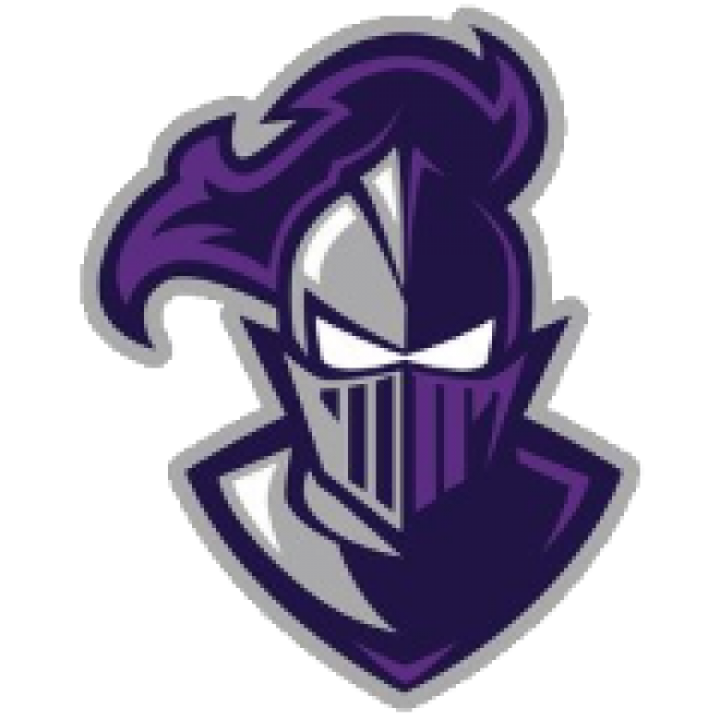 Purple Knight Manufacturing